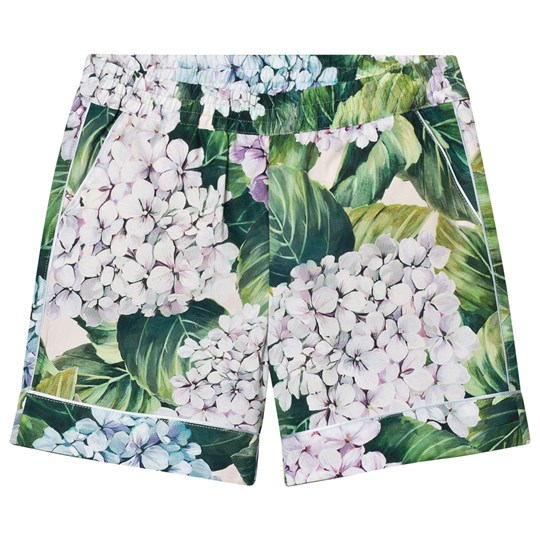 Dolce & Gabbana Printed Cotton Shorts Green HAC61