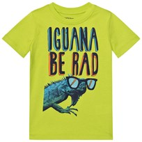 Lands End Green Iguana Graphic Tee Green