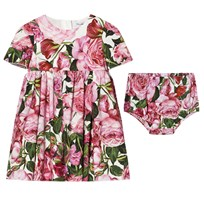 Dolce & Gabbana Pink Rose Print Cotton Dress with Bloomers HW412