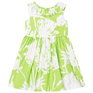 Image of Il Gufo Lime Floral Print Frill Collar Dress 12 years (2743756157)