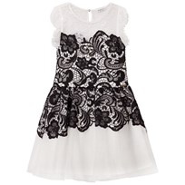 Guess Black White Lace Dress A000