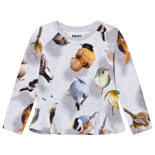 Molo Raelicka Long Sleeve T-Shirt Bouncing Birds Bouncing Birds