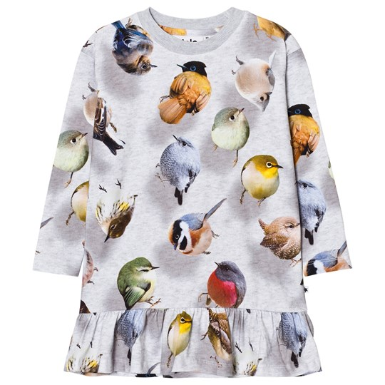 Molo Caras Dress Bouncing Birds Bouncing Birds