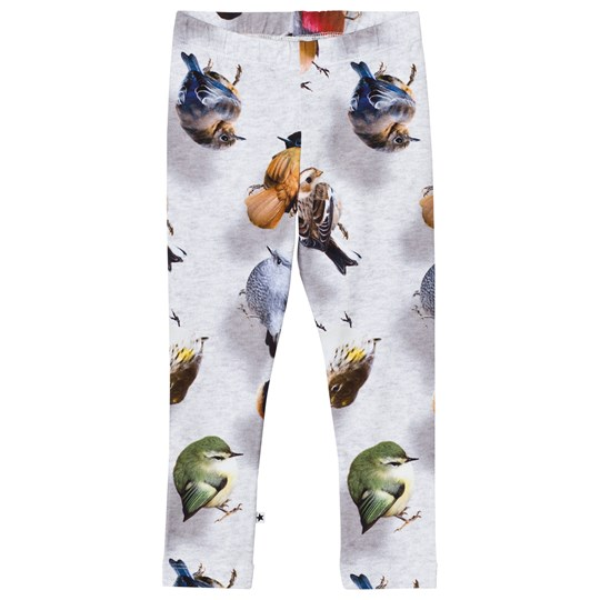 Molo Niki Leggings Bouncing Birds Bouncing Birds