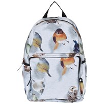 Molo Big backpack Bouncing Birds Bouncing Birds