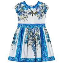 Dolce & Gabbana Blue White Floral Majolica Print Dress HAD10