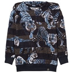 Molo Russel Hoodie Blue Tigers