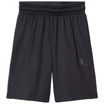Air Jordan Jordan 23 Short Black Black/Black