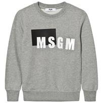 MSGM Grey Box Logo Sweatshirt 101