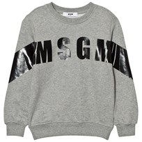 MSGM Grey Branded Stripe Sweatshirt 101