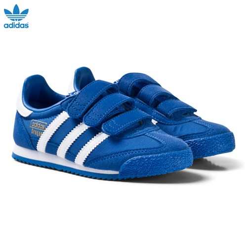 Blue and White Kids Dragon Trainers