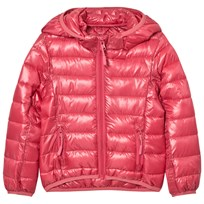 Molo Herb Jacket Rapture Rose Rapture Rose