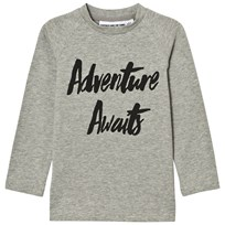 Gardner and the gang Adventure T-shirt Grå Grey