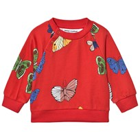 Mini Rodini Butterflies Sweatshirt Red Red