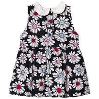 Margherita Kids Multi Floral Printed Daisy Collar Dress Multi