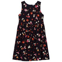Dolce & Gabbana Navy Floral and Lady Bird Print Interlock Sleeveless Dress HBE95