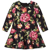 Dolce & Gabbana Black Rose Print Interlock Dress HNE10