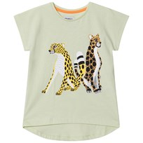 Filemon Kid T-Shirt Cheetahs Lime Cream Lime Cream