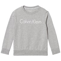 Calvin Klein Grey Branded Sweatshirt 016