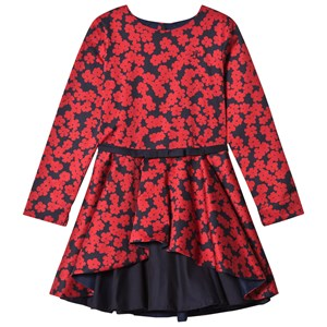 Image of Jessie & James Red Poppies Layered Dress 2 years (2743786877)
