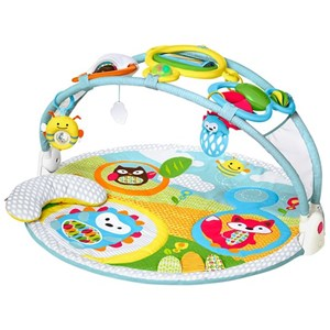Image of Skip Hop Explore & More Amazing Arch™ Activity Gym (3057103281)