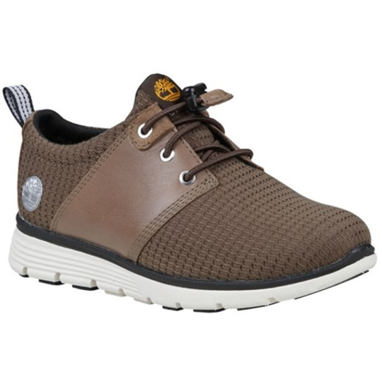 Timberland Brown Killington Oxford Youth Sneakers BROWN
