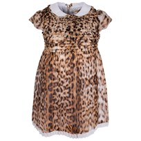 Roberto Cavalli Dress Beige/Brown Beige