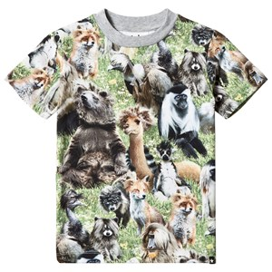 Image of Molo Ralphie T-Shirt Hairy Animals 152 cm (11-12 år) (2871258251)
