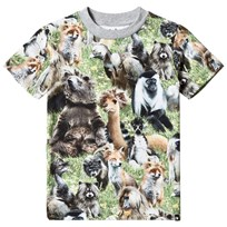 Molo Ralphie T-shirts SS Hairy Animals Hairy Animals