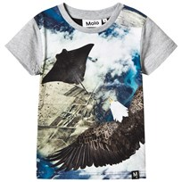 Molo Raven T-shirts SS Flying Flying