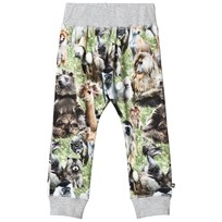 Molo Sammy Soft pants Hairy Animals Hairy Animals