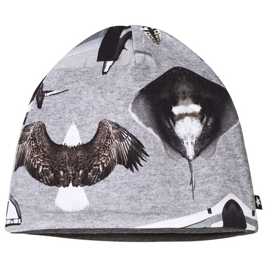 Molo Ned Baby Hat Planes and Birds Planes and Birds