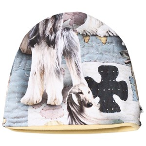 Image of Molo Nedine Baby Hat Dogtastic 0-3 mdr (2872539581)