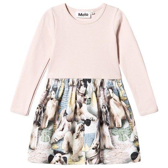 Molo Credence Dress Dogtastic Dogtastic