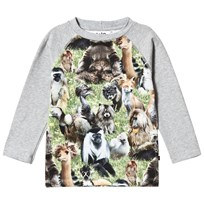 Molo Remington T-Shirt Hairy Animals Hairy Animals