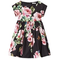 Dolce & Gabbana Black Rose Print Floral Short Sleeve Dress HNH41