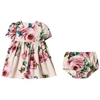 Dolce & Gabbana Pale Pink Rose Print Dress and Bloomers Set HAH41