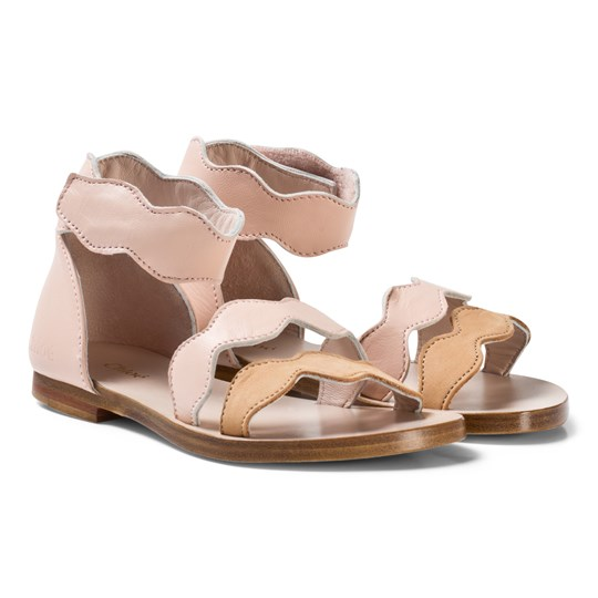 Chloé Light Pink Scallop Cut Out Leather Sandals 438