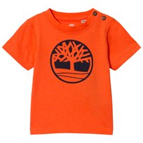 Timberland Orange Tree Logo Tee 420