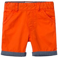 Timberland Orange Chino Shorts 420