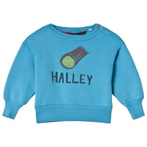 Image of The Animals Observatory Bear Baby Sweatshirt Blue Halley 12 mdr (2928428507)