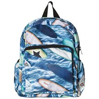 Molo Backpack Surfboards Surfboards