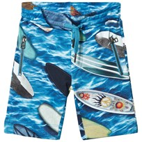 Molo Alis Shorts Surfboards Surfboards