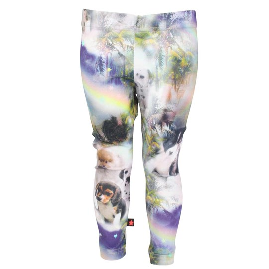 Molo Niki Leggings Dog Island Multi
