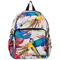 Molo Big Backpack  Parrots Parrots