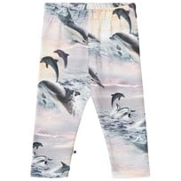Molo Stefanie Leggings Dolphin Sunset Dolphin Sunset