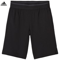 adidas Performance Black Climacool Training Shorts BLACK/CARBON S18