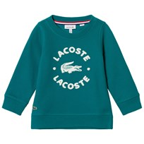 Lacoste Green Branded Sweater Green/White