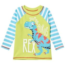 Hatley Dinosaur Rash Top Blue and Green