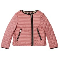 Burberry Pale Rose Gina Collarless Bomber Jacket Pink